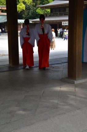 visite au sanctuaire meiji tokyo - 10