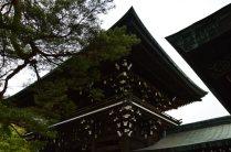 visite au sanctuaire meiji tokyo - 11