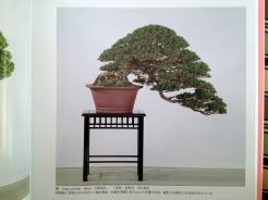 kokufuten 82 - le livre 10