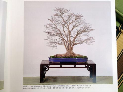 kokufuten 82 - le livre 12