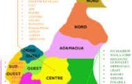 NORD-CAMEROUN : un double attentat-suicide fait au moins 6 morts