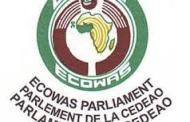 EXPULSIONS DE BURKINABE DE LA GUINEE : le TOCSIN interpelle la CEDEAO