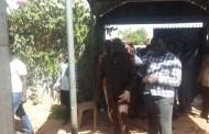 INCENDIE DES DOMICILES DES CONSEILLERS MUNICIPAUX DE L'ARRONDISSEMENT 8 : «Le Burkina n'est pas un pays de sauvagerie», dixit Zéphirin Diabré, président de l'UPC