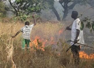 Campagne de lutte contre les feux de brousse
