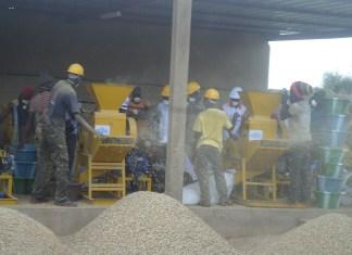 La Somaphy produit des équipements post-récolte