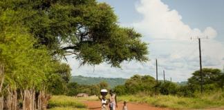 L'électrification rurale