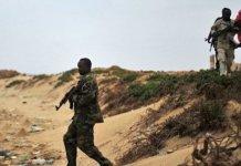 Des frappes aériennes des Etats-Unis contre l'EI en Somalie