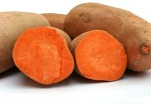 La patate douce de Guinée Bissau