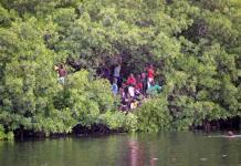 La mangrove de Fatick et Joal-Fadiouth protégée par des citoyens