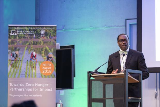 L'alimentation du monde assurée par l'Afrique