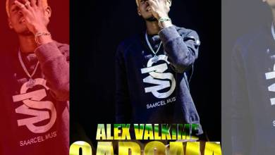 Photo of Alex Valkime – Gaboma (Un titre de malade)