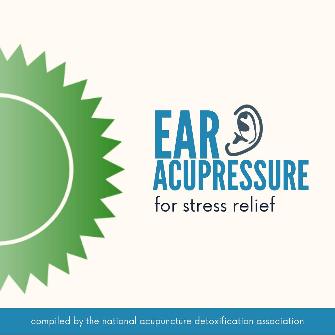 Ear Acupressure Teaching Tool