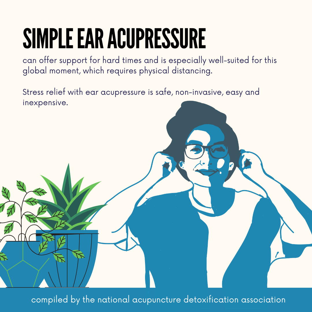 Ear Acupressure Teaching Tool (PDF Version)