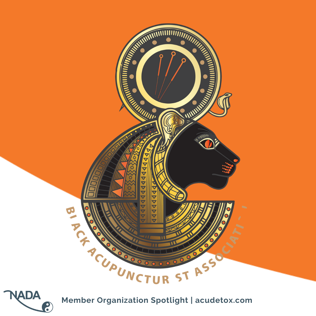 Organizational Spotlight: Black Acupuncturist Association