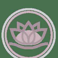 ICONOS-lida-AcuMas-acupuntura-masajes9