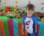 Lua Birthday Party ideas for a kids birthday