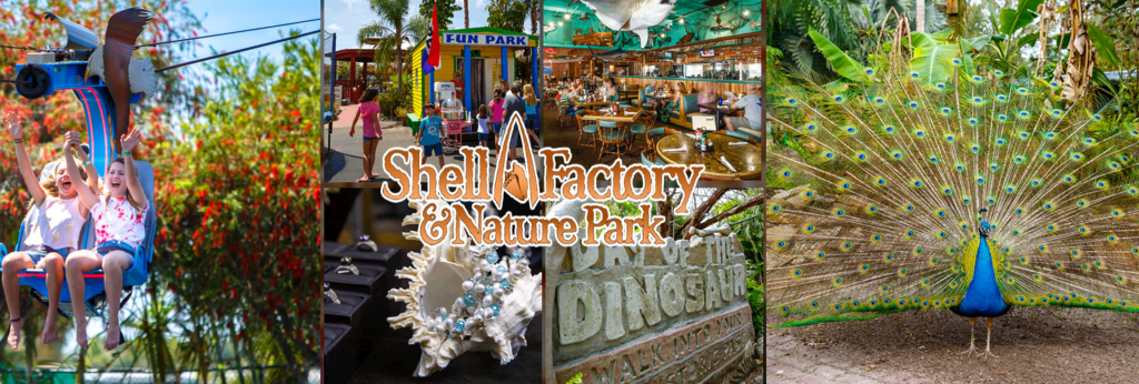 shell factory fort myers, fl #familytravel
