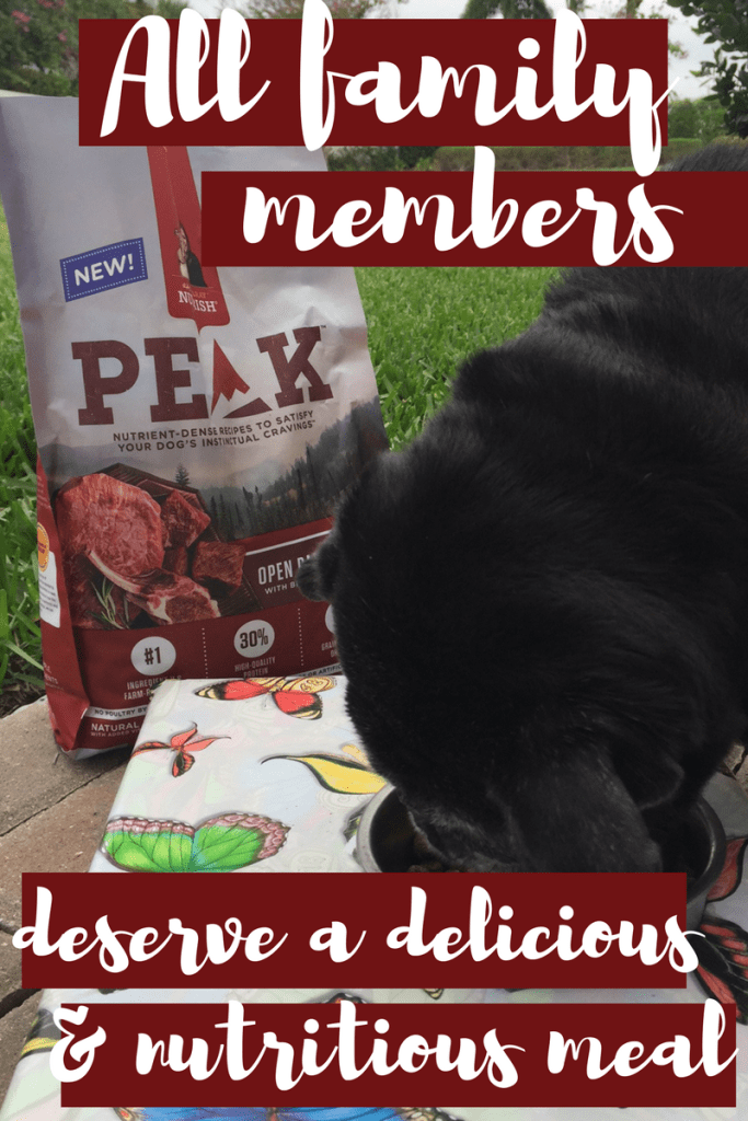 ember desrves delicious and nutritious food. Introducing the new Nutrish PEAK Recipe to our dog inspired this Lamb meatball recipe for the family | Rachel Ray's Nutrish PEAK Open Range Recipe | #MyNutrishPeak | dog food | lamb recipes