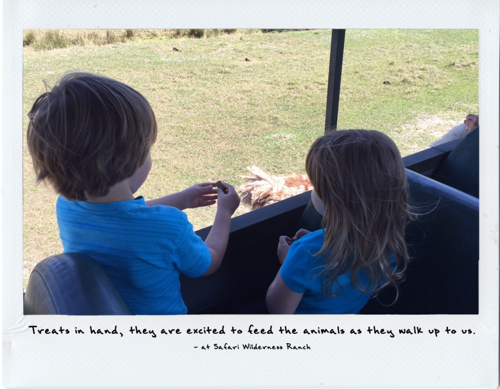 Safari Wilderness Ranch with kids | wildlife safari Orlando | acupful.com | A Cupful of Carters | family travel | Central Florida | #visitcentralFl