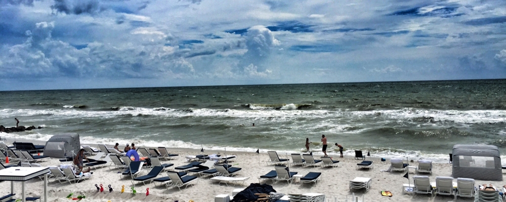The Edgewater Beach Hotel In Naples Fl Review Photos A Cupful