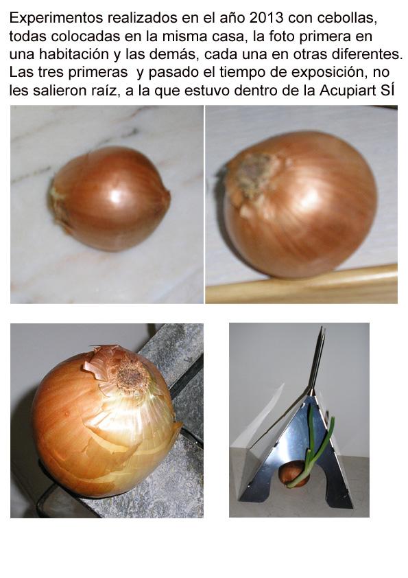 con_cebollas_2013