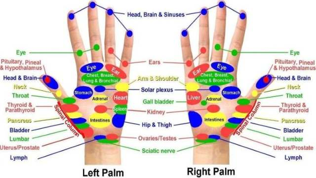 Acupressure Points Hand Chart