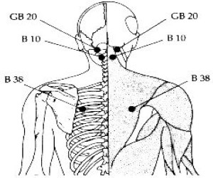 B38 Acupressure Points
