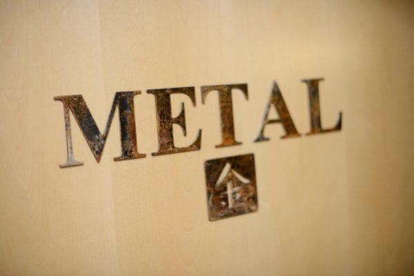 treatment door_metal