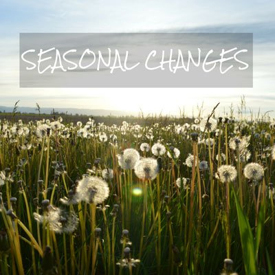 Seasonal Changes
