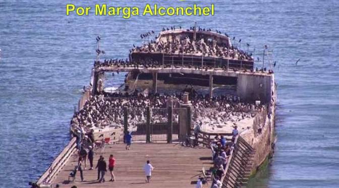 Barcos de hormigón por Marga Alconchel Ferreira