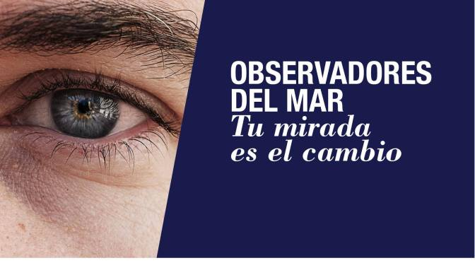 ALGA INVASORA Halimeda incrassata por Laura Royo. ACUSUB Revista