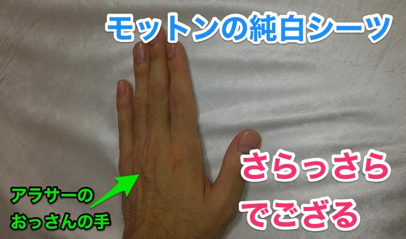 モットンの純白シーツを触っている左手の甲