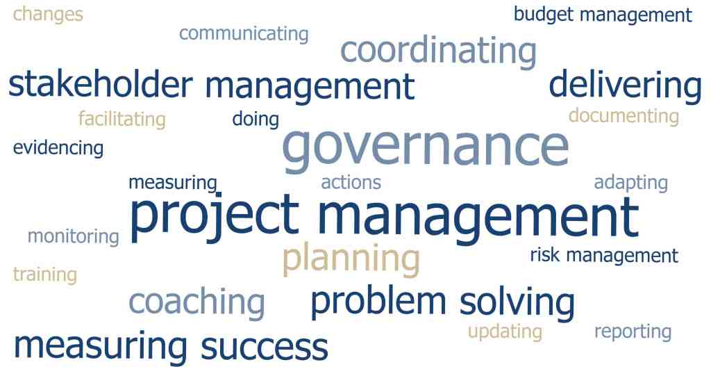 Implementation Manager wordle
