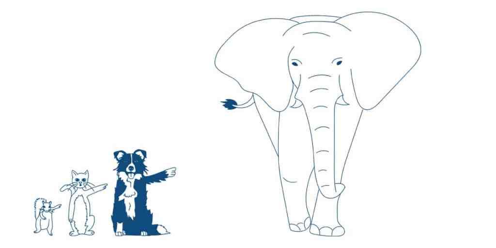 Noahs ark illustration for Pareto principle by Ad Esse Consulting