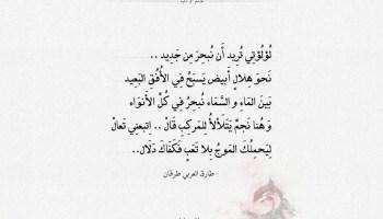 كلمات أسرار المحيط - طارق العربي طرقان