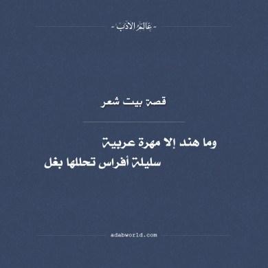 وما هند إلا مهرة عربية - قصة هند بنت النعمان مع الحجاج