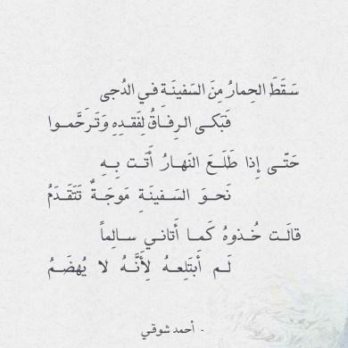 شعر أحمد شوقي - سقط الحمار من السفينة في الدجى