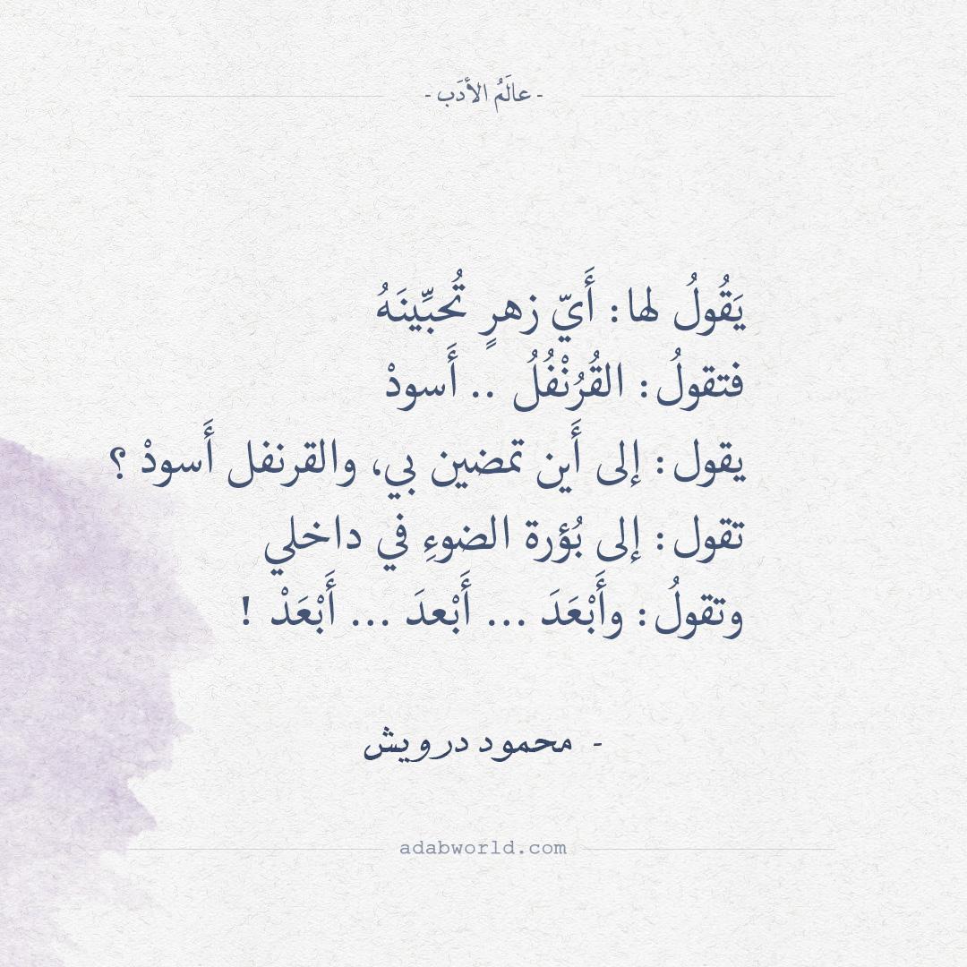 شعر محمود درويش - يقول لها: أي زهر تحبينه
