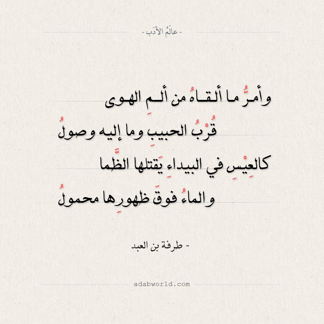 من اعذب و ارق كلمات الغزل للشاعر طرفة ابن العبد