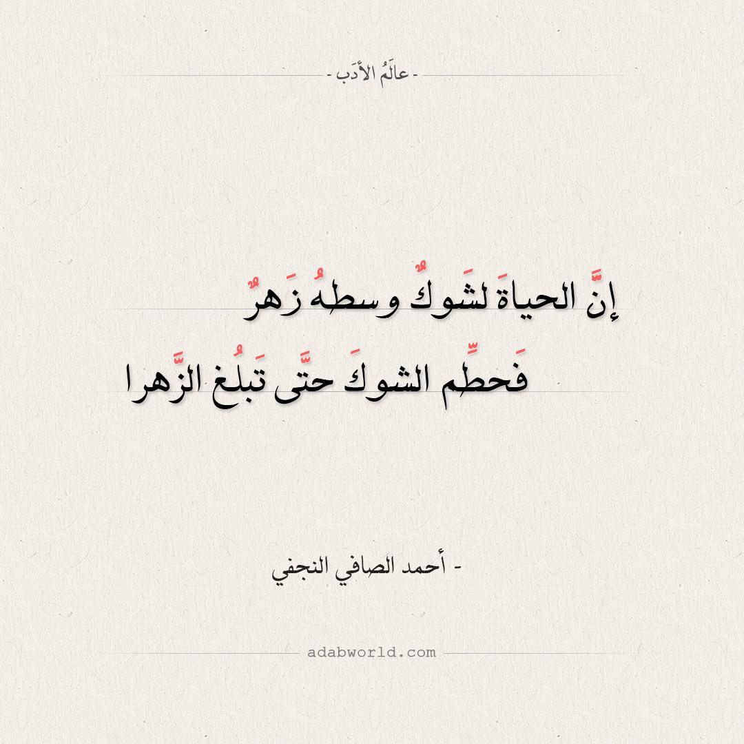 شعر أحمد الصافي النجفي - إن الحياة لشوك وسطه زهر