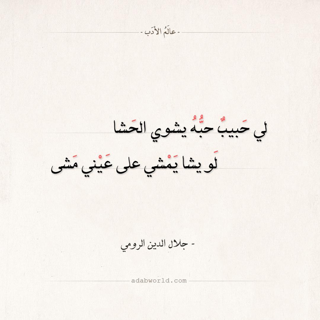 شعر جلال الدين الرومي - لي حبيب حبه يشوي الحشا