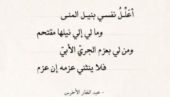شعر عبد الغفار الأخرس - أعلل نفسي بنيل المنى