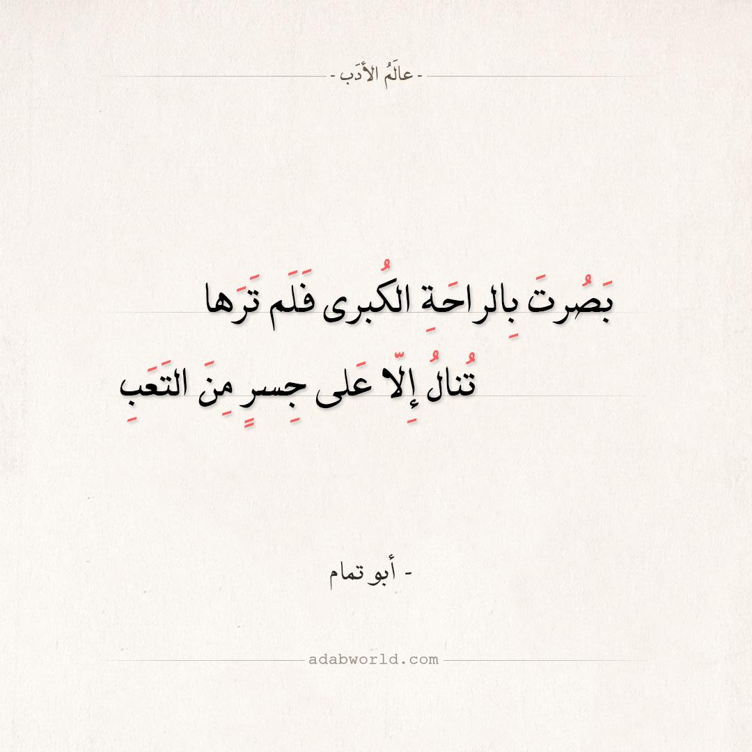 شعر أبو تمام - بصرت بالراحة الكبرى فلم ترها