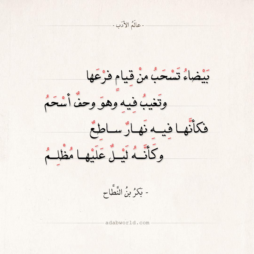 شعر بكر بن النطاح - بيضاء تسحب من قيام فرعها