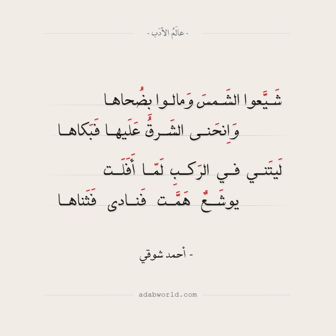 الصمت هو صراخ - غسان كنفاني