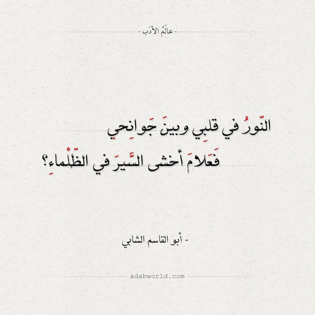النور في قلبي وبين جوانحي - أبو القاسم الشابي