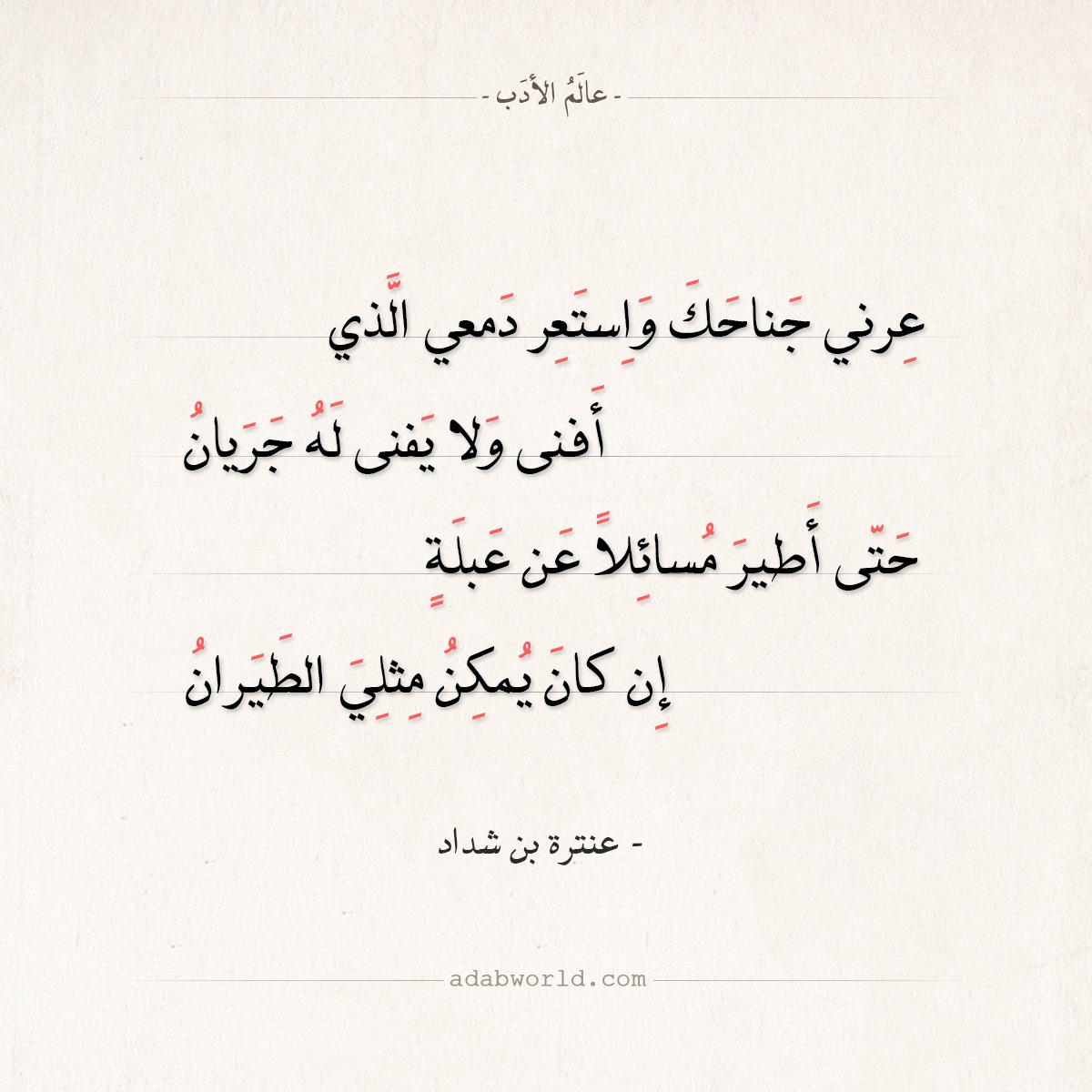 اقتباسات من أجمل ابيات شعر عنترة بن شداد عالم الأدب