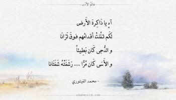 شعر محمد الفيتوري - اه يا ذاكرة الأرض