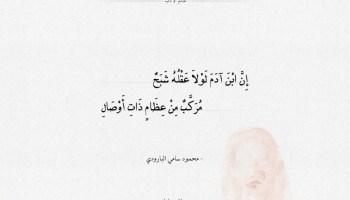 شعر محمود سامي البارودي - إن ابن ادم لولا عقله شبح