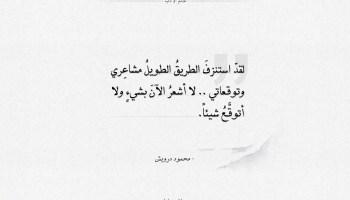 اقتباسات محمود درويش - الطريق الطويل